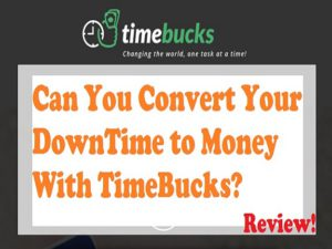 Time Bucks Review feature