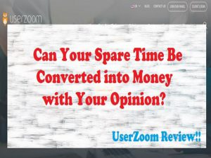 UserZoom Review feature