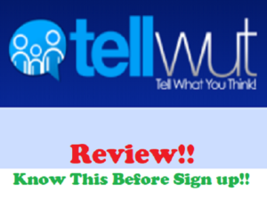 Tellwut Review, legit or scam