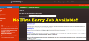 Instant Working Scam - no data entry