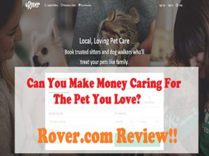 is Rover scam