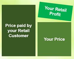 Qnet Retail profit